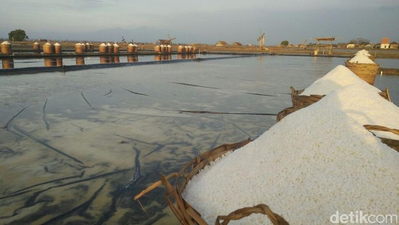 Darmin dan Mendag Bahas Impor Garam Industri, Ini Hasilnya