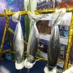 Begini Cara Agar Realisasi Tangkapan Tuna Bisa Capai Kuota