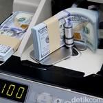 Ini Alasan RI-Malaysia-Thailand Sepakat Tak Gunakan Dolar AS