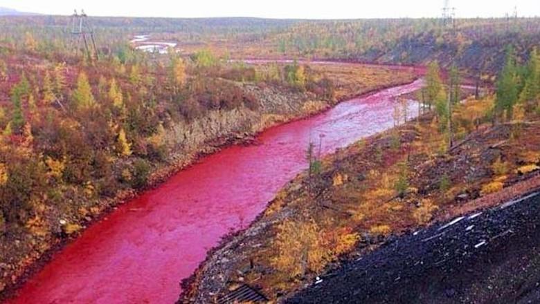 Foto: Sungai Daldykan di Rusia yang airnya berubah jadi merah (CNN)