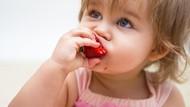 Si Kecil Lagi Susah Makan? Jangan Khawatir, Atasi dengan 5 Cara Ini!