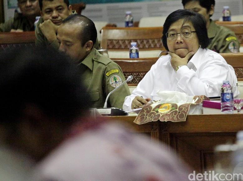 Menteri LHK Ajak Menteri Denmark Cek Pencemaran di Teluk Jakarta