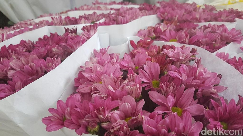 Pilihan Bunga yang Tepat untuk Orang Tersayang Sesuai Bulan Kelahirannya