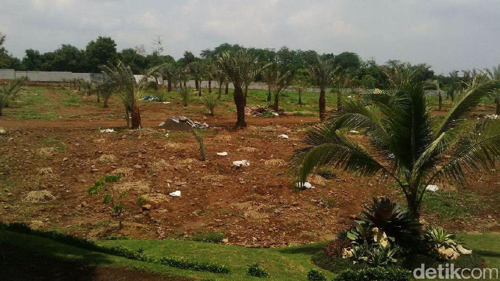 Calon Destinasi Baru di Pasuruan, Kebun Kurma Ala Timur Tengah