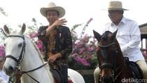 Ikhtiar Jokowi Dinginkan Jakarta