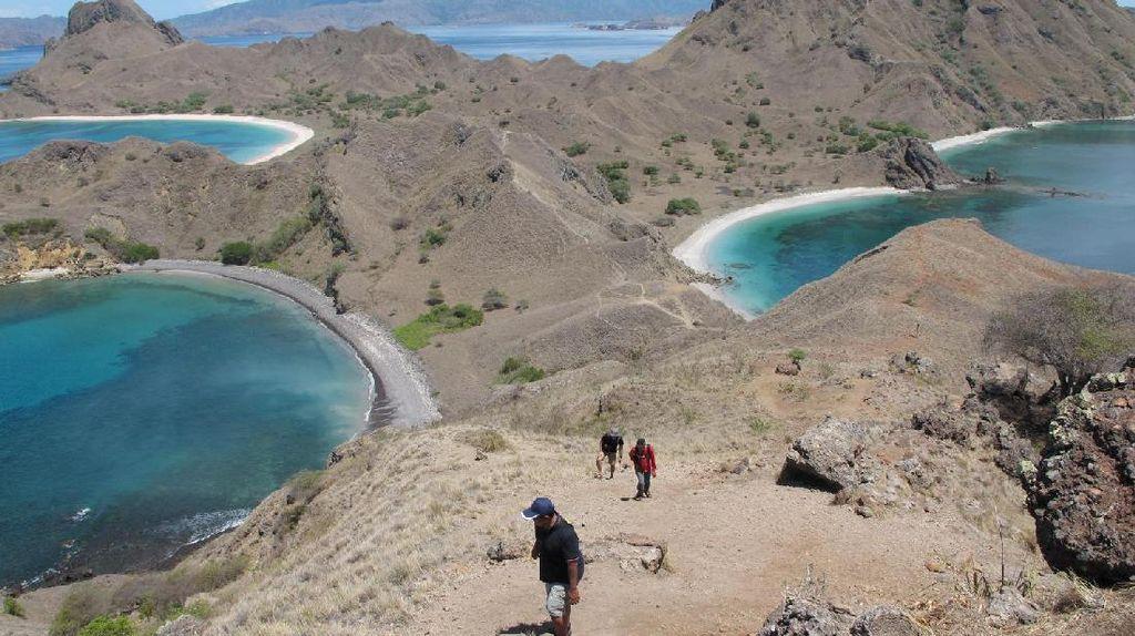 Turis dari 3 Negara Ini Paling Sering ke NTT