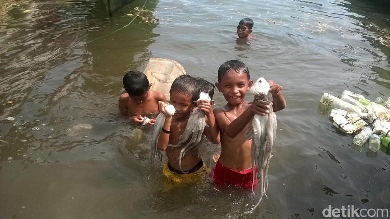 Foto: Anak-anak Wakatobi menangkap gurita dengan tangan kosong (Bonauli/detikTravel)