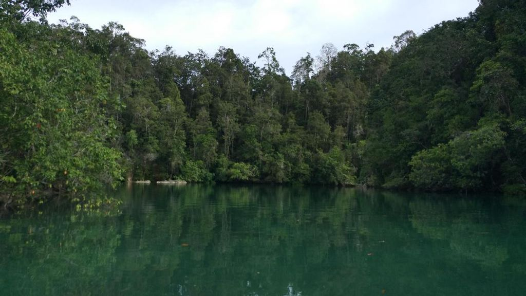 Potret Laguna Misterius Pulau Gam di Raja Ampat