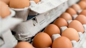 Ini Cara Tepat Menyimpan dan Menguji Kesegaran Telur