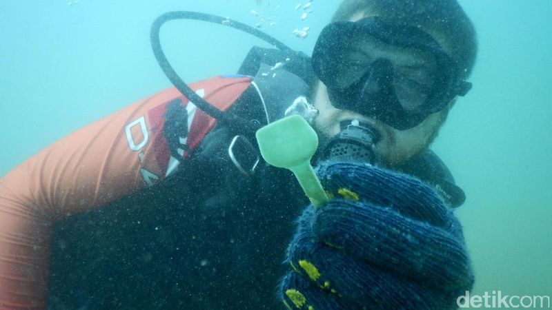 Foto: Penyelam Kemenko Maritim dan Scuba Junkie melakukan pembersihan dasar laut dari sampah plastik di kawasan Pedie dan Pelabuhan Baru Labuan Bajo, Sabtu (10/12/2016). Acara ini mengangkat tema Diving for Debris (Agung/detikTravel)