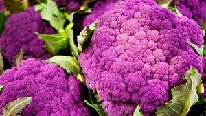 Makanan Berbahan Kelapa dan Sayuran Ungu Diyakini Lebih Sehat