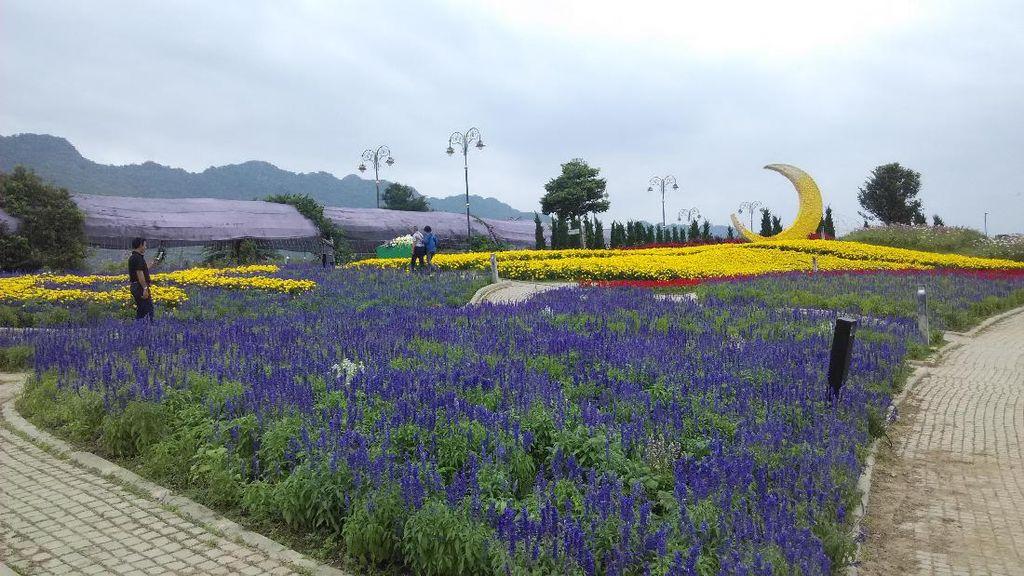 The Bloom, Sisi Lain Thailand yang Cantik di Khao Yai