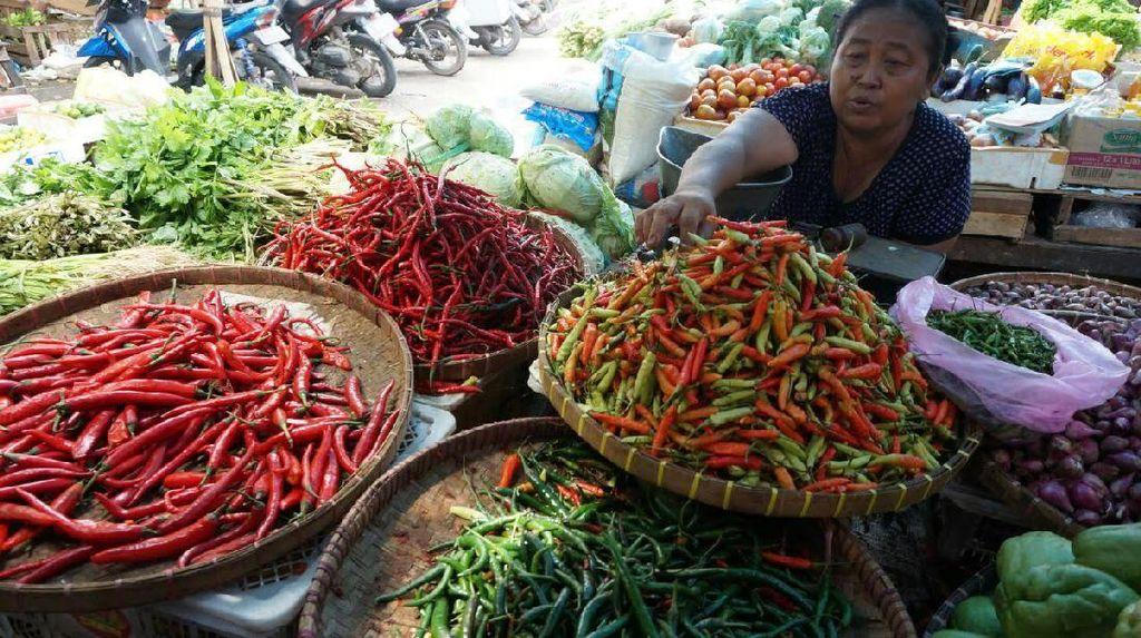 Harga Cabai di Yogyakarta Tembus Rp 75 Ribu/Kg