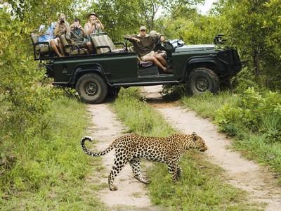 Puaskan Jiwa Petualangmu, Coba Safari di Afrika