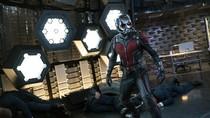 Scott Lang Tak Akan Bertarung Sendiri di Ant-Man and the Wasp