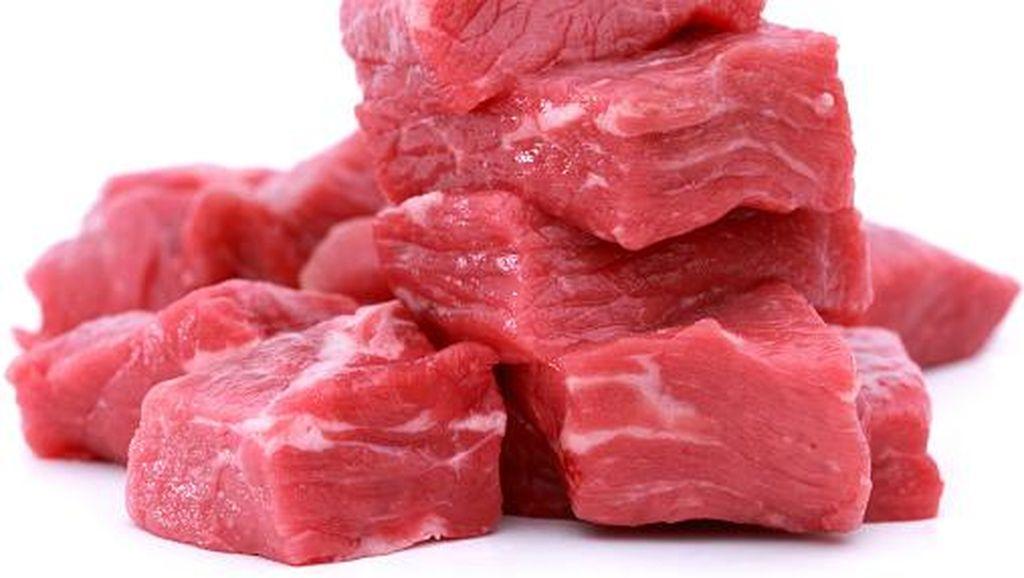 Morrissey Sebut Hewan Menderita Rasisme Karena Adanya Daging Halal