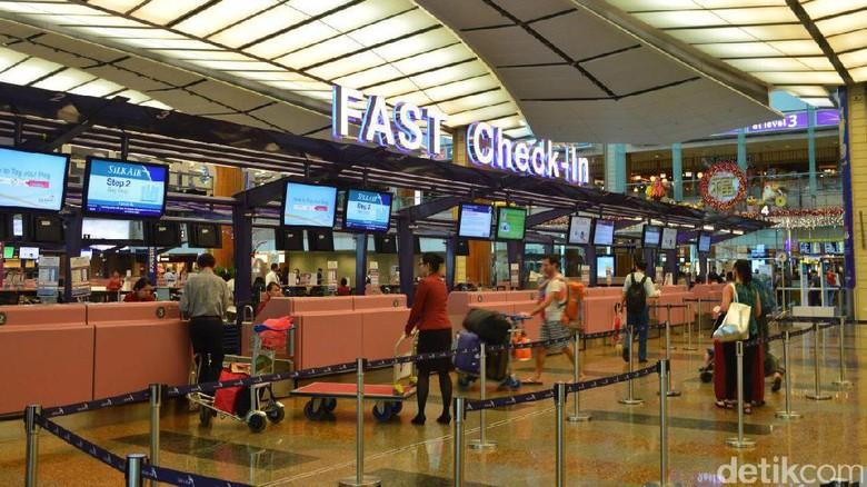 Ilustrasi Bandara Changi di Singapura (Dana Aditiasari/detikTravel)