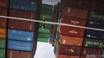 Penyelundupan 26 Ton Daging Sapi Illegal dari Australia Digagalkan