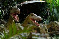 Berjumpa Aneka Satwa dari Berbagai Belahan Dunia di Singapore Zoo