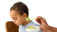Anak Nggak Mau Makan? Coba Cek Makanannya Deh, Bun