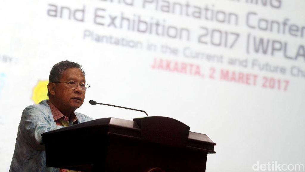 Kondisi Nyata Ekonomi RI dari Kacamata Darmin Nasution