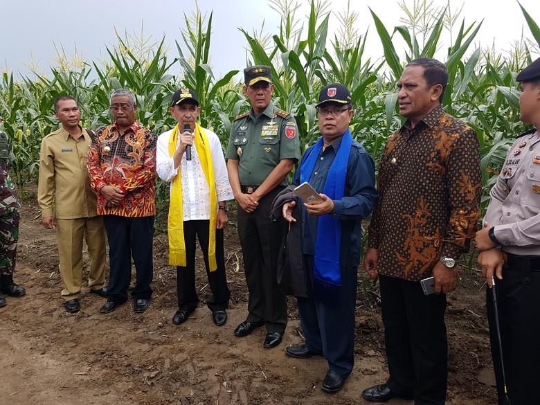 Melongok Tambang Emas Hijau dan Emas Biru di Maluku