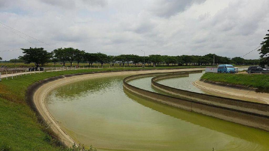 286 Ribu Hektar Irigasi Direhabilitasi Sepanjang 2016