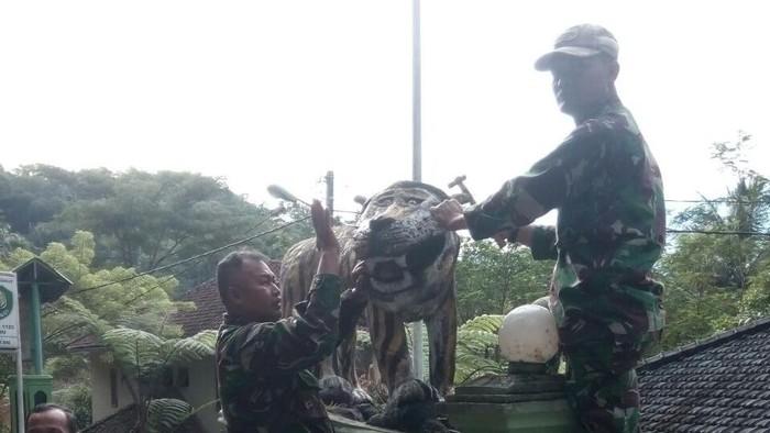 Dokumentasi: Pembongkaran Patung macan Koramil 1123 Cisewu