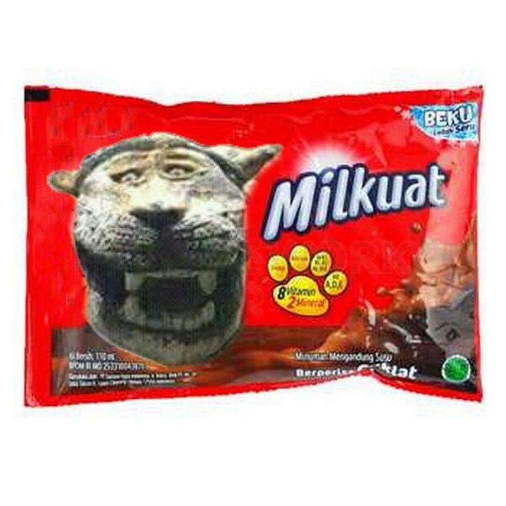 Tampangnya yang lucu membuat netizen tak tahan untuk membuat meme-nya. Salah satu ini, si macan menjadi bintang iklan salah satu merek biskuit (Foto: meme di internet)