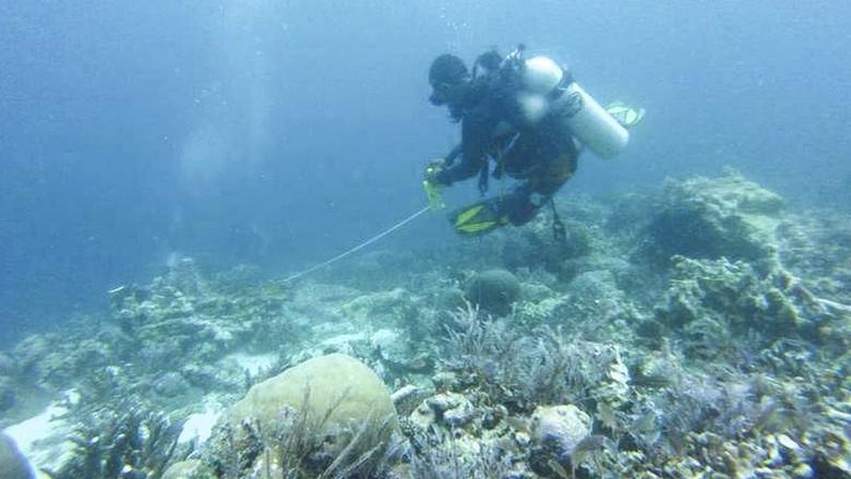 RI Evaluasi Kebijakan Kapal Pesiar di Daerah Konservasi