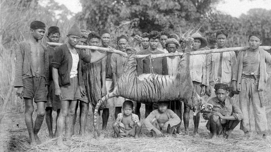 Macan di Rampogan Sima, Saat Kiai dan Simbah Dibunuh