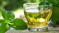 Ganti Minum Kopi dengan Teh Hijau dan Dapatkan 4 Manfaat Sehatnya
