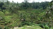 Bangga! Ubud Jadi Salah Satu Destinasi Terbaik Dunia 2017