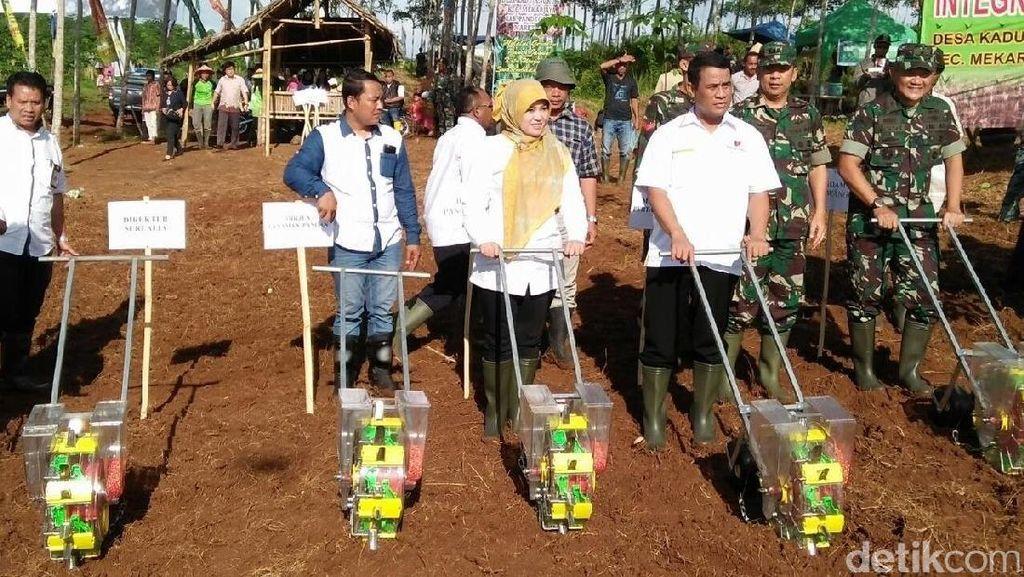 Indonesia Optimistis Jadi Lumbung Pangan Dunia 2045