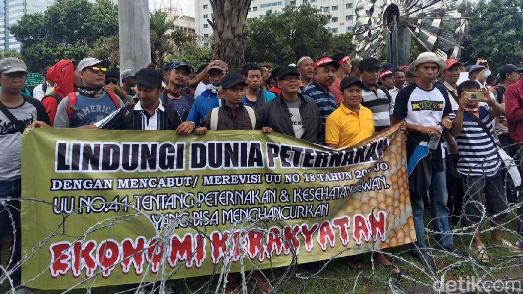 Demo ke Jakarta, Peternak Ayam Curhat Pasokan Jagung Minim
