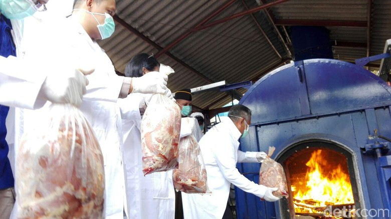 2 Ton Daging Celeng dan Gulma Impor Ilegal Dimusnahkan di Cilegon