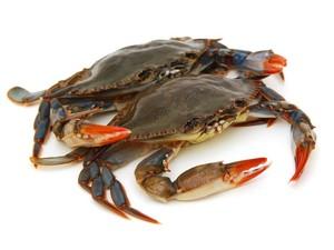 Wah, Kepiting Hidup Ini Masih Makan Sayuran Saat Dimasak!