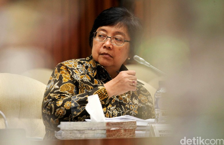 Respons Menteri Siti Soal Jokowi - Jakarta Lingkungan Hidup dan Kehutanan Siti Nurbaya mengatakan pihaknya telah memperbaiki sistem penanaman pohon massal agar pertumbuhannya dapat