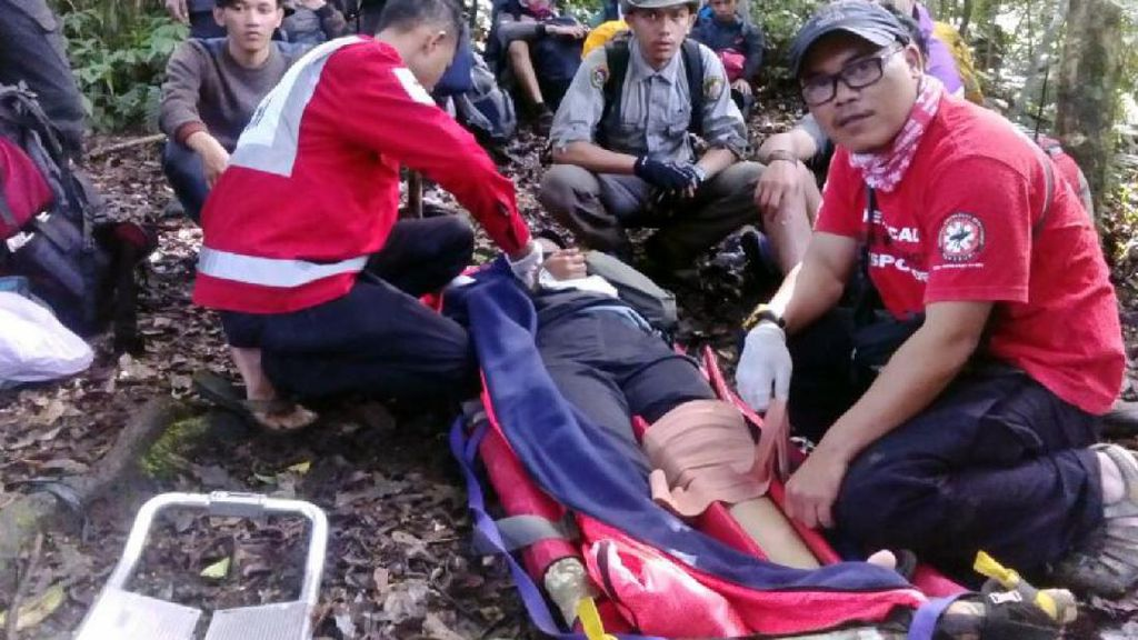 Habis Logistik, 11 Pendaki Gunung Pangrango Diselamatkan Petugas