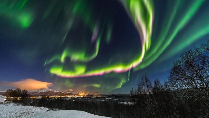 Cahaya aurora. Foto: (Visit Senja/Facebook)