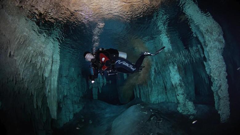 Foto: Menyelam ke dalam gua yang tersambung ke laut, berani? (Cenotes Sac Actun)