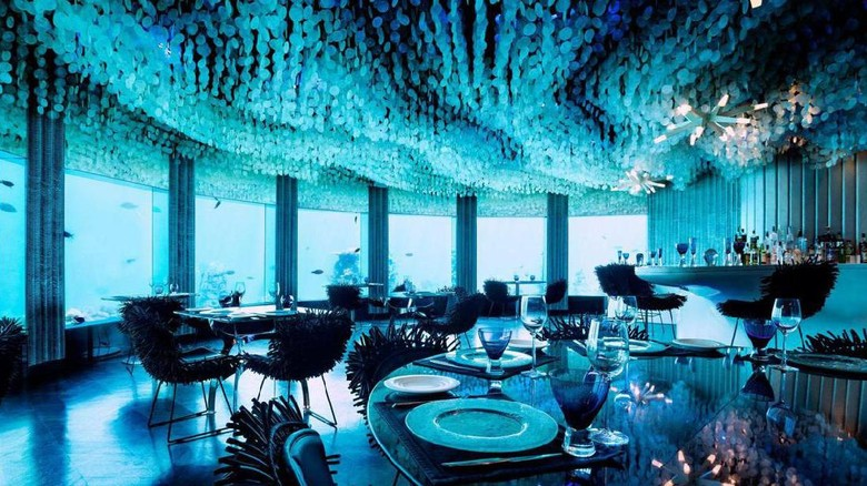 Subsix, bar bawah laut pertama di dunia (PER AQUUM Niyama/BBC Travel)