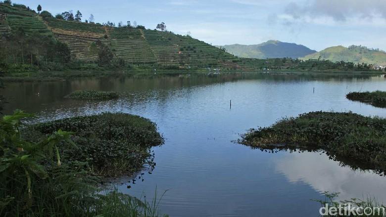 Foto: Telaga Cebong di Wonosobo (Randy/detikTravel)