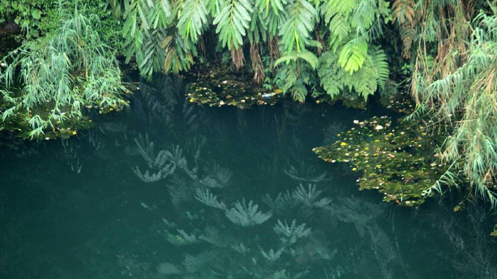 Potret Sumur Mistis di Banjarnegara