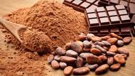 5 Mitos Soal Cokelat Ini Sudah Tak Perlu Lagi Dipercaya