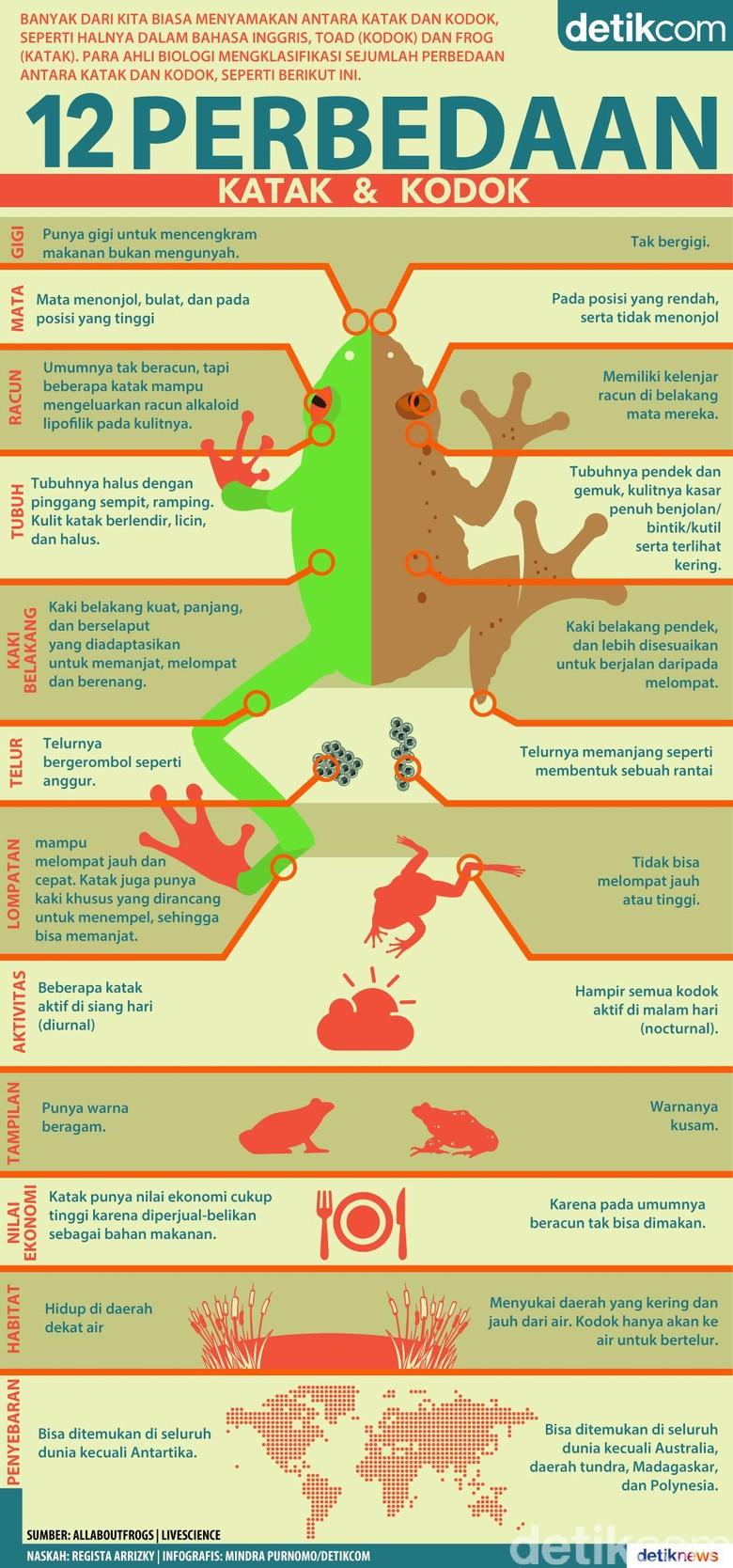12 Perbedaan Katak dan Kodok