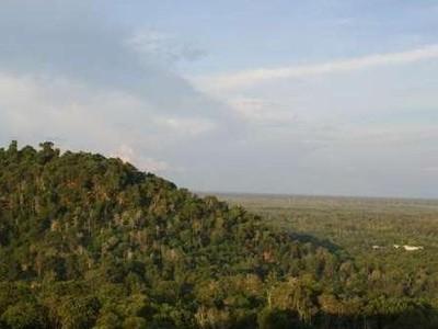 Bukit Tangkiling, Spot Terbaik Melihat Palangkaraya dari Ketinggian