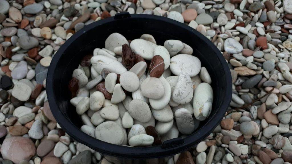 Sekelumit Kisah Penambang Batu di Pantai Kolbano NTT
