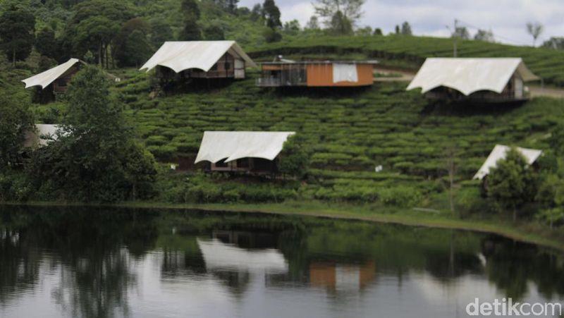 Obyek wisata Glamping Lakeside merupakan penginapan yang berjejer di tepi Situ Patenggang menjadi tempat favorit para wisatawan terutama untuk yang berlibur bersama keluarga atau untuk berbulan madu (Wisma/detikTravel)