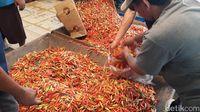 Harga Cabai Rawit Merah Masih Tinggi Rp 60.000/Kg